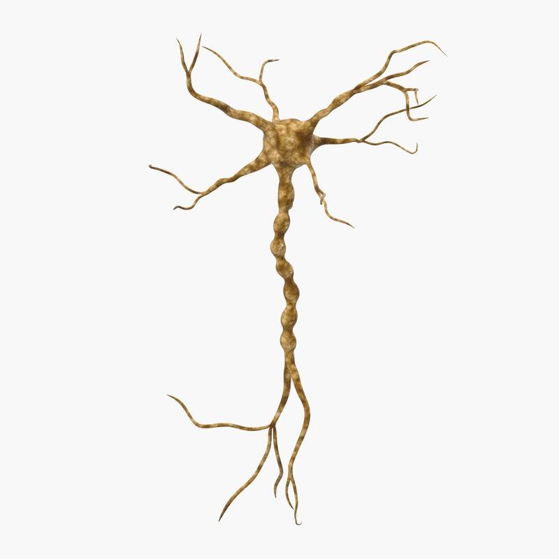 neuron neuro 3d max