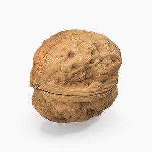 3d walnut nut model