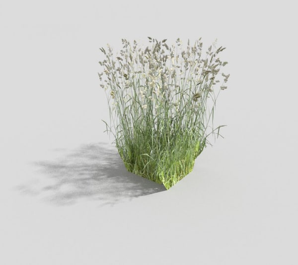 meadow grass 3d 3ds