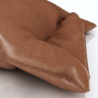 3d max pillow leather