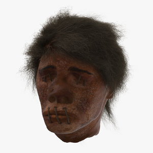 3d model shrunken head 01