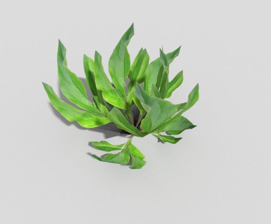 plant games 3ds