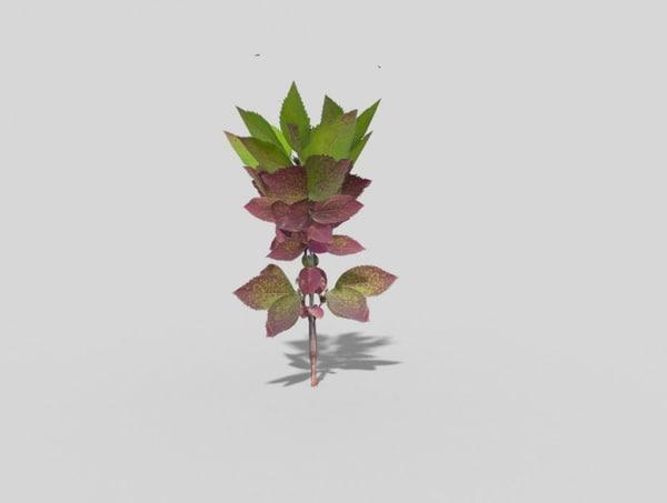 plant games 3d 3ds