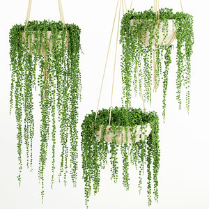 3d plant decor model