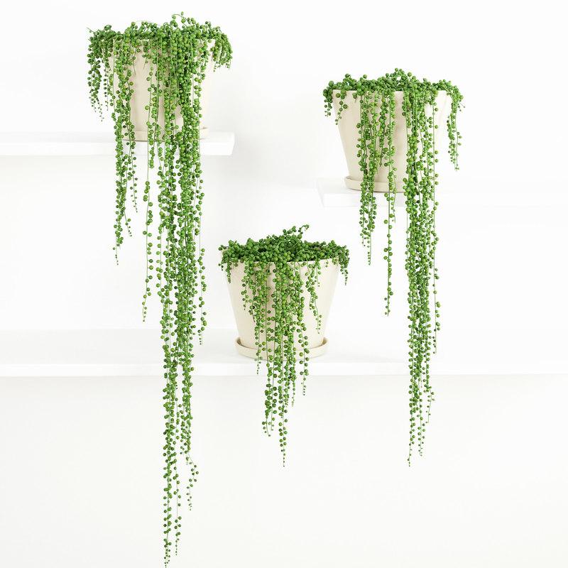 3d plant decor