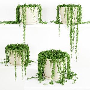plant decor 3d max