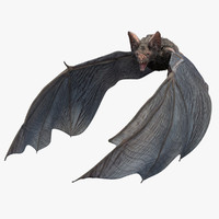 Vampire Bat with Fur (Rigged)