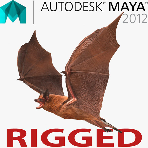 bat rigged 3d model