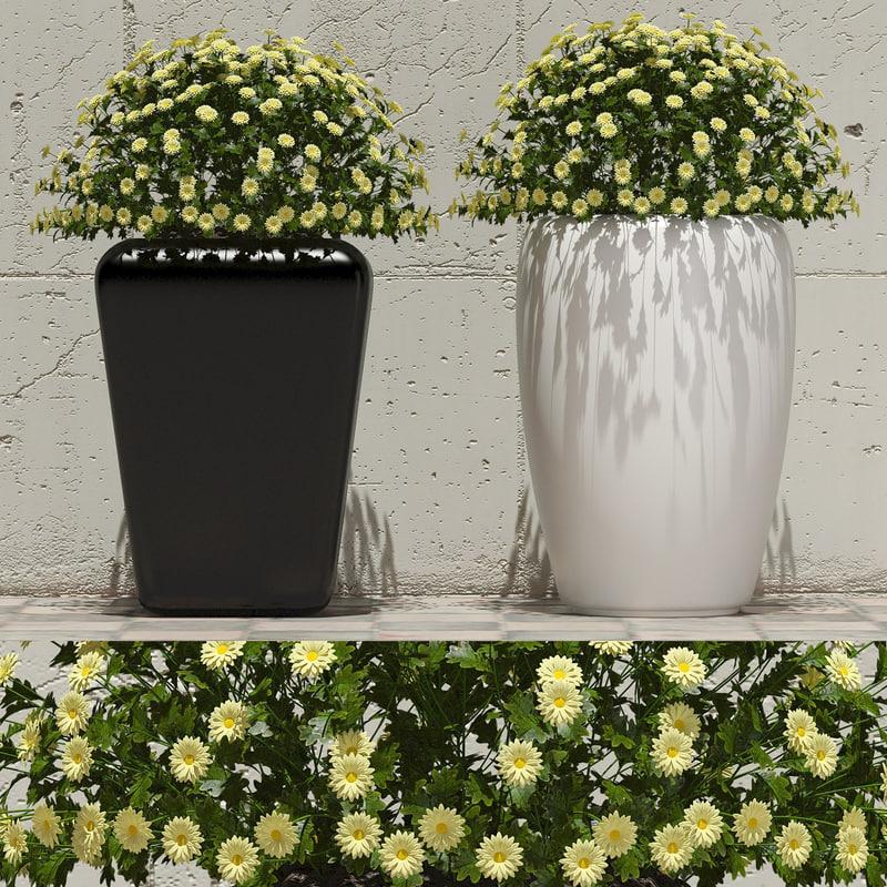 3d decorative ornamental