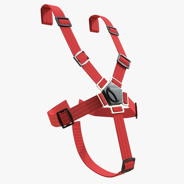 safety belts 01 max