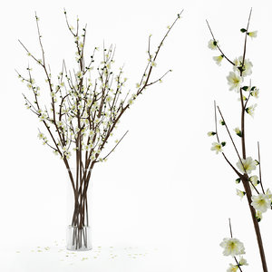 max branches vase
