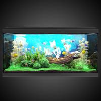 aquarium design 3d max