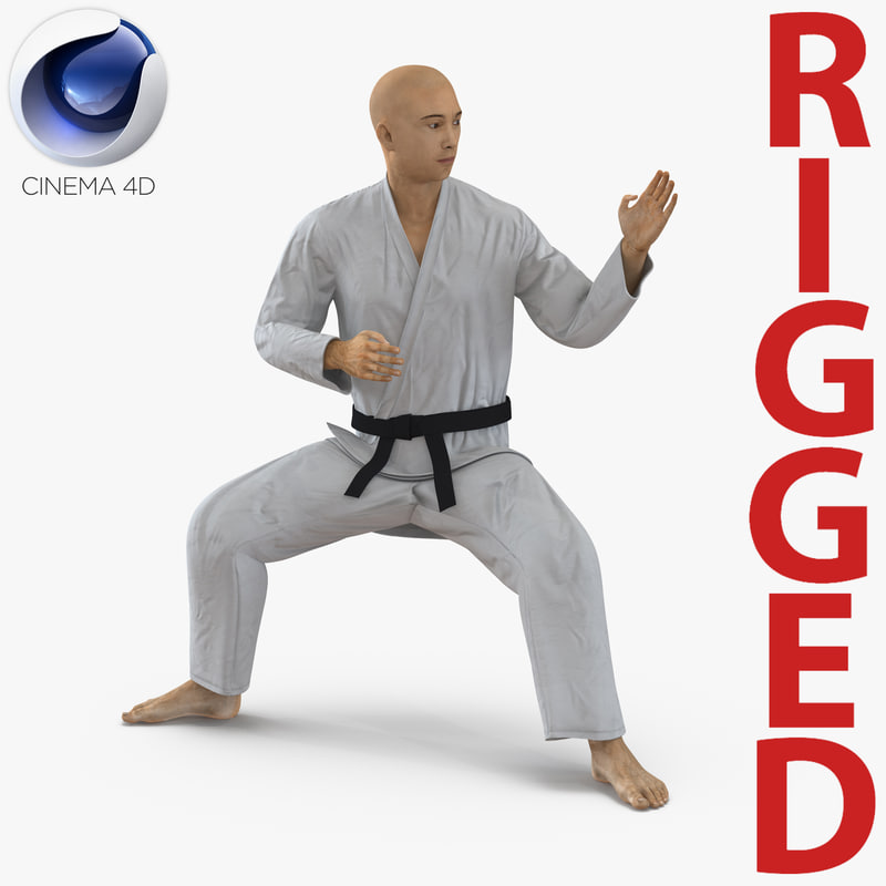 japanese karate fighter rigged 3d model