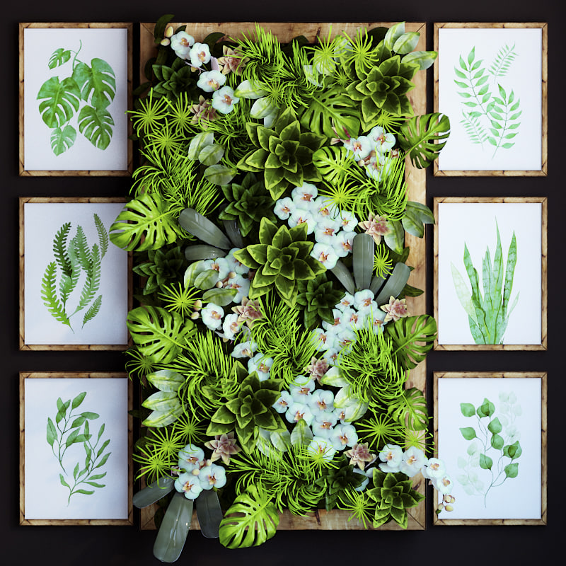 max green wall