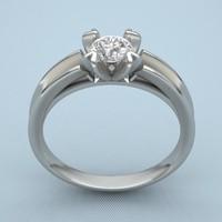 3d model of print ring