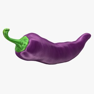 3d chili pepper purple