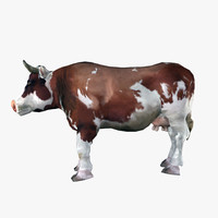 cow obj
