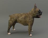 bulldog dog 3d 3ds