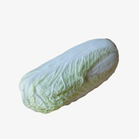 3d high-poly chinese cabbage