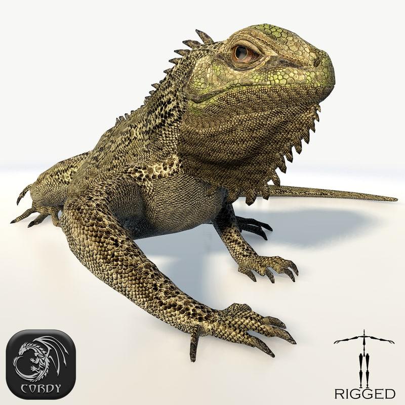 3d iguana rig animation model