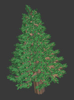 simple block pine tree 3d model