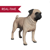 realistic pug dog real-time 3d model