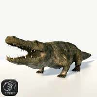 3d model realistic crocodile