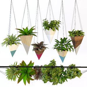 hanging plant max