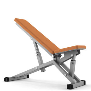 3d bench fitness