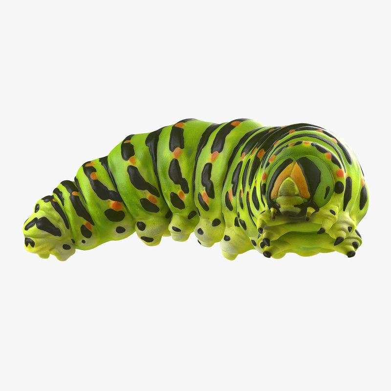 3d caterpillar pose 4