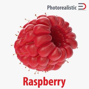 raspberry 4 3d c4d