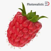 max raspberry 3
