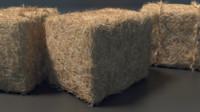 3d model hay