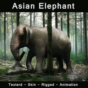 3d good elephant