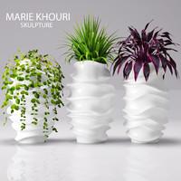 plants pots 3d max