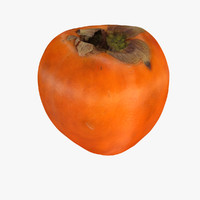 persimmon fruit 3d model