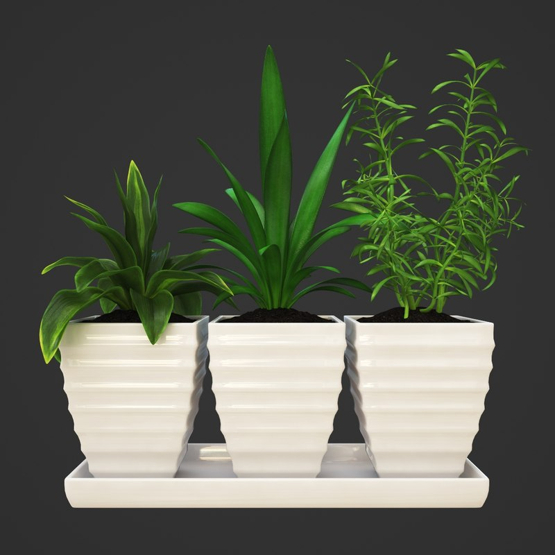 plants set 3d max