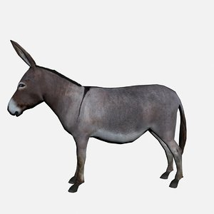 donkey 3d max