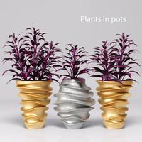 3d plants pots