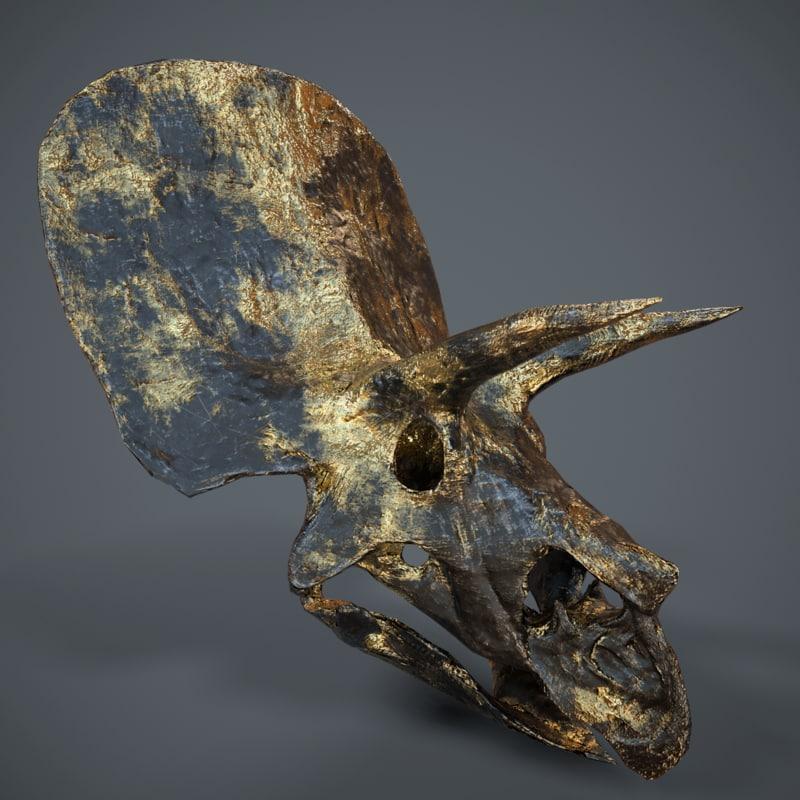 stylized triceratops skull 3d model