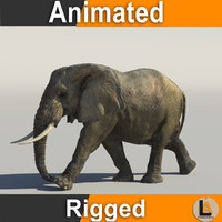 3d model of rigged african elephant