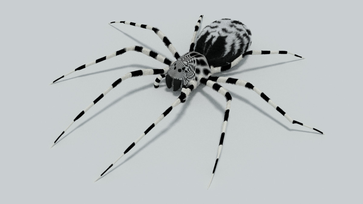 3d model spider rigged legs