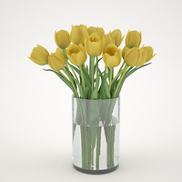 Yellew Tulips