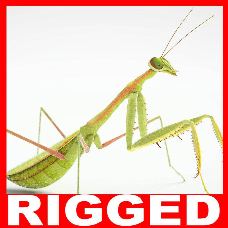 praying mantis rigged max