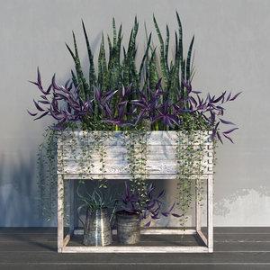 3d terrace plants