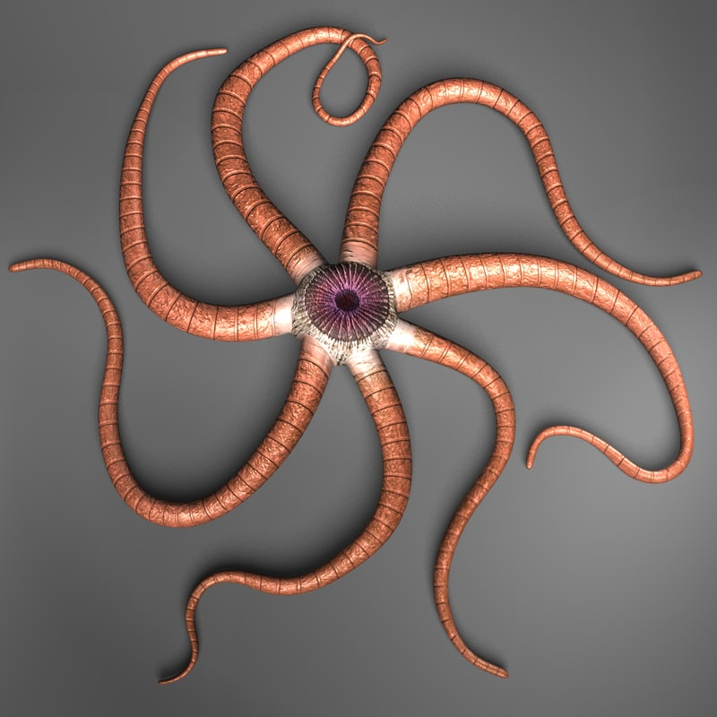 starfish alien creature 3d fbx