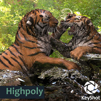 tiger keyshot zbrush highres 3d 3ds