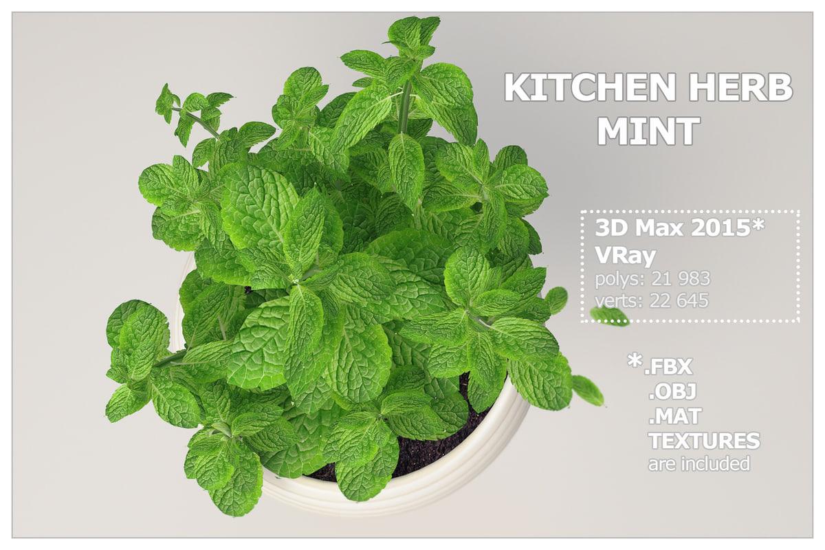 kitchen herb mint 3d max