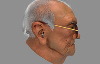 photoreal old man 3ds