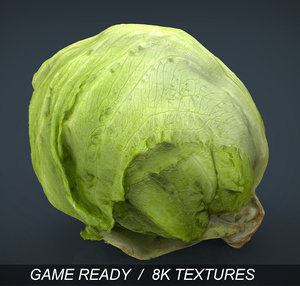 max iceberg lettuce